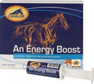 Electrolitos Cavalor Energy Booster 50gr