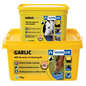 Piedra sal Horslyx Garlic Mini 650gr